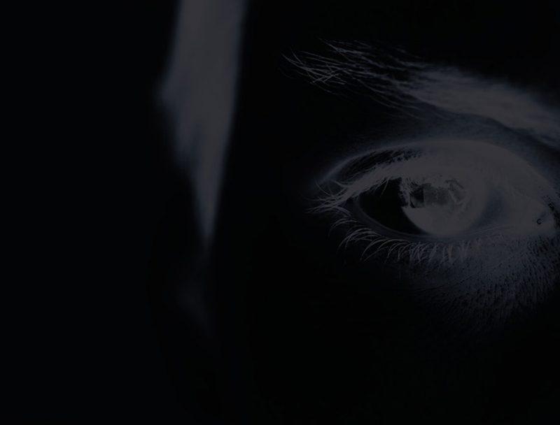 Net Defence eye